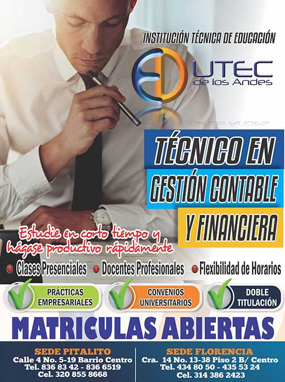 Técnico en Gestion Contable y Financiera